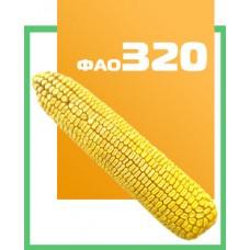 Кукурудза ДН Аквазор